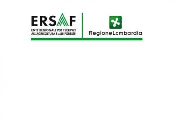 Logo Ersaf