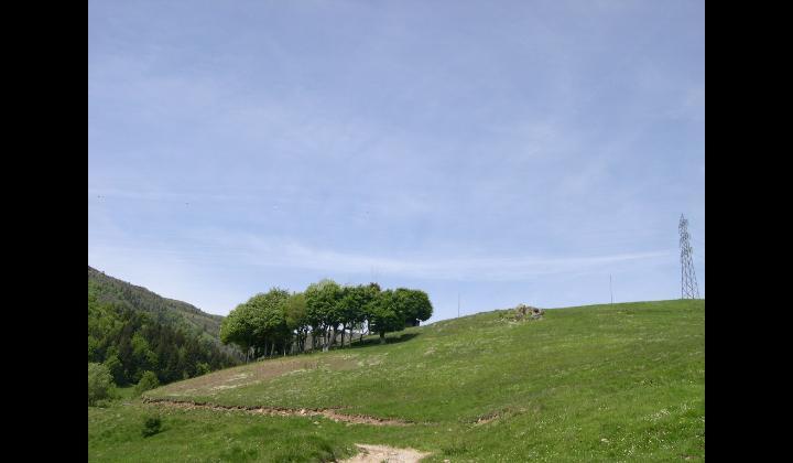 Località Pontogna e il roccolo