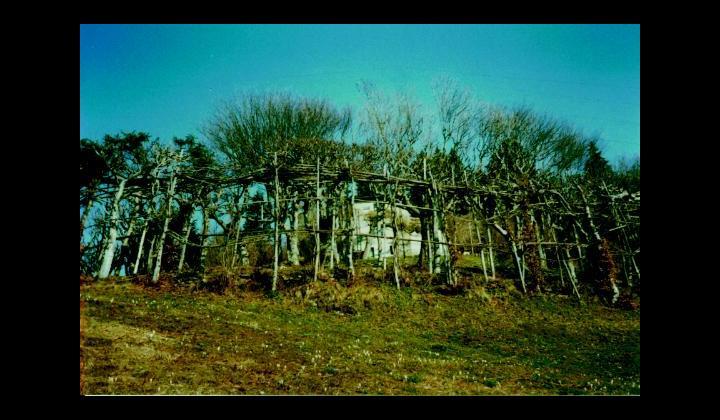 Un roccolo della Valle Trompia
