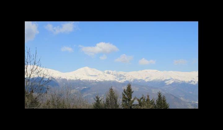 Monte Maniva mt. 1854 visto dalla località Campedei