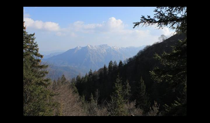 Sullo sfondo la Punta di Reai mt. 1247 vista dalla località Pradalunga