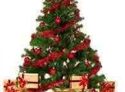 Eventi organizzati nel periodo natalizio